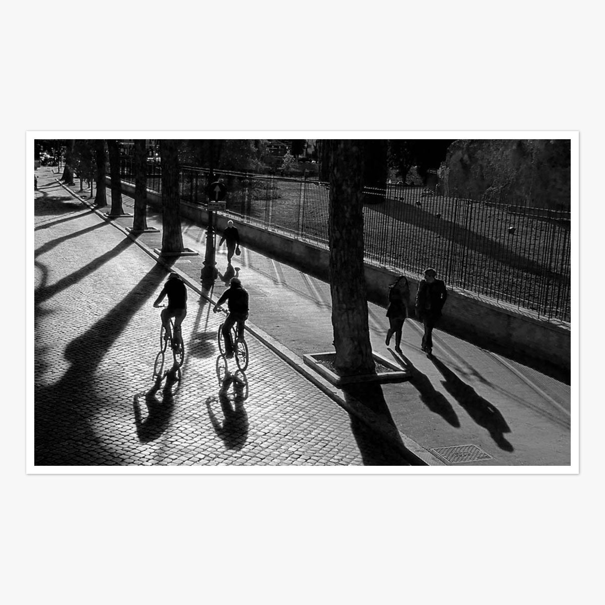 Rome Cyclists by Roger Taylor