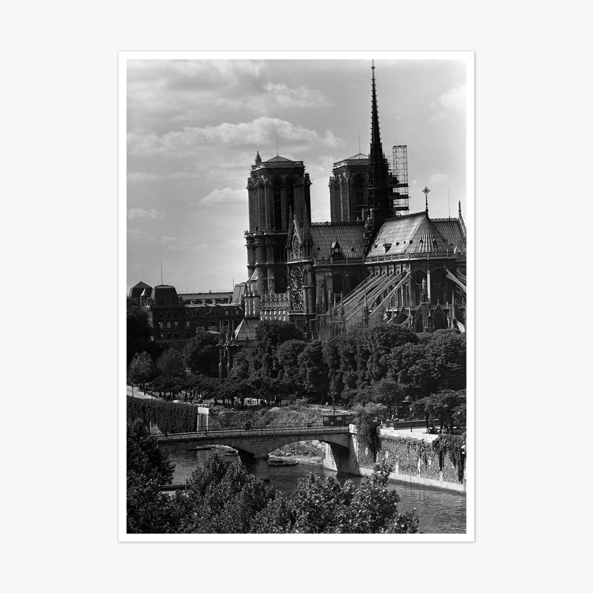 Notre Dame Cathedral Paris by Frank Rust
