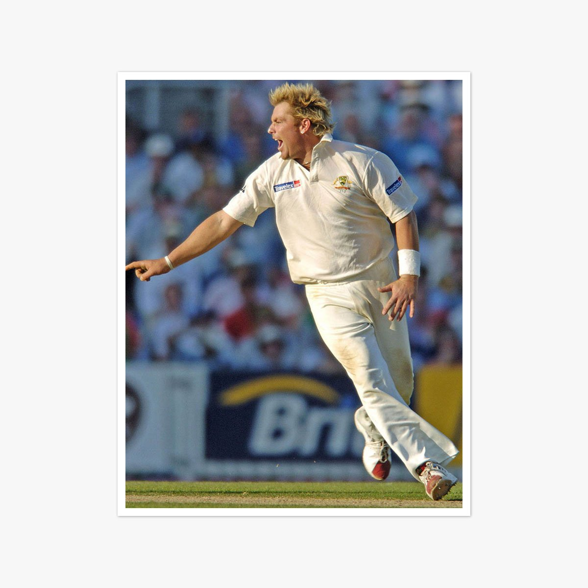 Shane Warne by David Ashdown